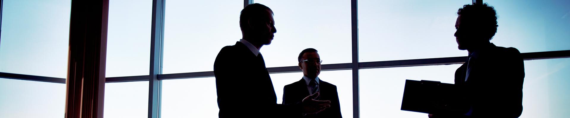 Consultoria y gestion de riesgos